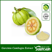 GMP factory garcinia cambogia extract sample