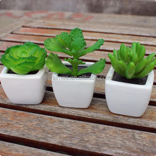 Gros mini noms de cactus plantes artificielle cactus for Plante artificielle solde