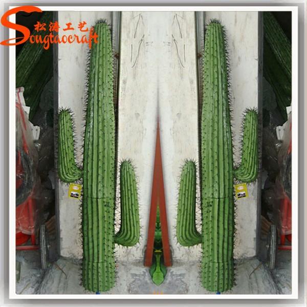 décoration jardin cactus