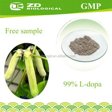 Pharmaceutical Raw Material Mucuna Pruriens Extract in Herbal Extract for Parkinson