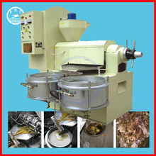 6YL small olive oil production line, oil press