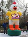 Personaje de dibujos animados inflables / gallo para publicidad - 4 M