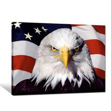 Animal Owl Photo Print on Canvas/Flag Canvas Printing Art/Modern Home Decor Wall Art