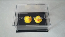 Dustproof Box Container Acrylic Display Stand