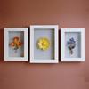 my shadow box latest photo frame 2x3 acrylic picture frame