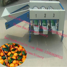 factory price and professional fruit Sorting Machine
