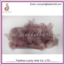 Lucky Arts Cheap Bird Feathers For Sale