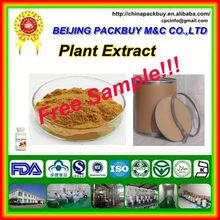 Top Quality From 10 Years experience manufacture chasteberry extract