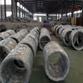 304/316 alambre de acero inoxidable ( 0.1 mm a 16 mm )