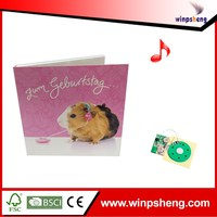 2015 Hot sale custom voice recordable greeting card chip for toys