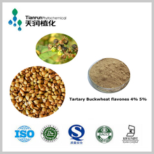 100% natural tartary buckwheat extract manufacturer