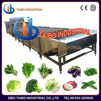Standard and customized fruit and vegetable washing machins / sus304 washer beet