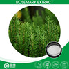 Factory Supply 98% Antioxident High Purity Rosemary Extract Ursolic Acid