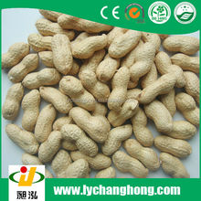 Best quality peanuts in shell 30kg or 50kg /bag for sale with lowest price