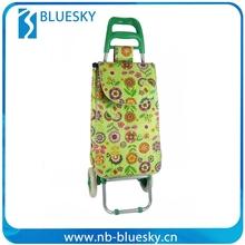 Take Easy Folding Shopping Cart