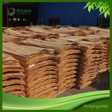 Eucalyptus wood price