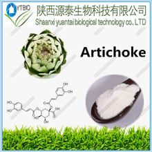 natural and high quality Certificate 100% Pure Natural Certificate 100% Pure Natural Artichoke Leaf P.E powder