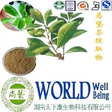 Hot sale Paraguay tea extract/Caffeine 5%/Yerba mate extract/Nutritional balance plant extract