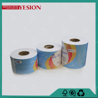 Yesion New Arrive 260gsm Noritsu D701Dry Minilab Photo Paper, Mini Lab Digital Frontier Photo Paper