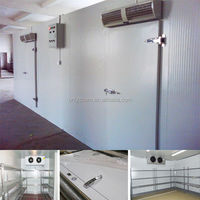 High efficiency deep frozen evaporator air cooled cold room