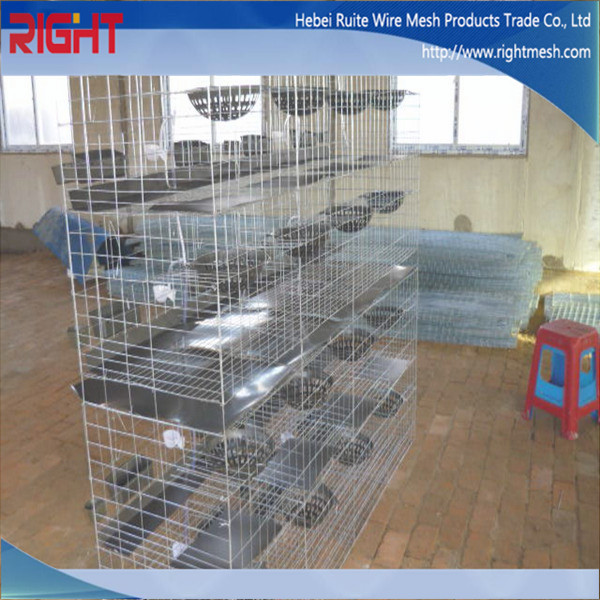 Cheap electro galvanized welded industrial rabbit cages for Cheap c c cages