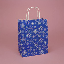 fancy recyclable color craft paper shopping bags