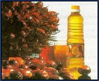 CRUDE PALM OIL, RBD PALM OLEIN, PALM KERNEL SHELL, PALM OIL PRODUCTS