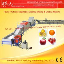 CE Approved Fruit and Vegetable Process Machine