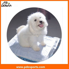 Buy wholesale direct from China dog pet pads