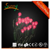 solar garden lights UL G12 LED string light for USA and Canada