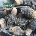 Maca, Extracto de Maca/ Productos Relacionados con Maca y Polvo