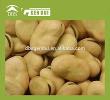 skin broad bean Yunnan dried broad beans dried broad beans