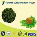 العشبية استخراج أوراق الشاي الحلو 75% سعال الغوثية لديها وظيفة