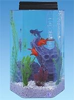 20 gallon hexagon combo fish tank buy fish tank product for 20 gallon hexagon fish tank