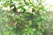 Plastic Garden Fencing Trellis Netting