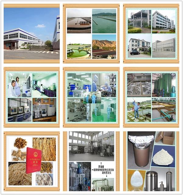 Haute Qualité API 99% Dextromethorphan HBr CAS 125-69-9 Dextromethorphan bromhydrate poudre avec bas prix