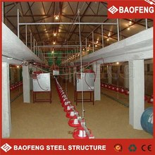 long using layers and broiler chicken farming equipment