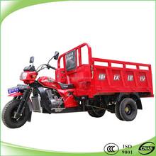 200cc or 250cc double rear wheel tricycle 5 wheeler