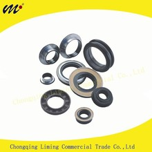 China Manufacture Automotive Rubber Seal and Industrial Double Lip Crankshaft FKM Toyota Oil Metal Seal