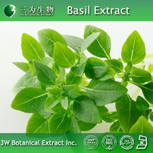 100% Natural Thai basil Extract Made in 3W Botanical