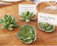 Succulent Place Card Holder office table decoration