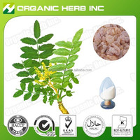 Natural quality 65% Boswellic acid   Boswellia Serrate Extract   Boswellin Extract