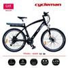 """36V 250W MTB rear rack battery 26"""" electric bike,EN15194 Certificate"""