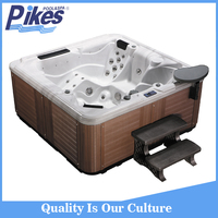 factory direct balboa system adult hot tub with TV
