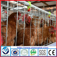 china manufacturer design layer chicken cages/water trough for chickens/automatic drinker for chicken