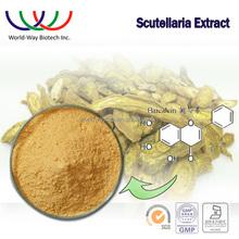 Hunan KOSHER HACCP certified Arthritis Prevention baicalin extract,85% baicalin radix scutellaria extract powder