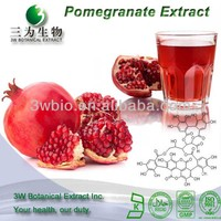3W Supply High Quality Pomegranate Seed Ellagic Acid Extract Powder P.E.