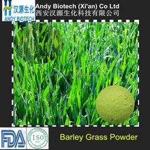 High Quality 4:1 10:1 15:1 20:1 Young Barley Leaves Barley Grass Fine Powder