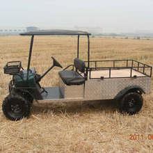 Mini electric utility cart/car /buggy
