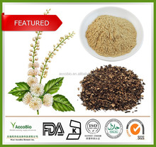 Top quality 100% Natural Black Cohosh Extract powder/Triterpenoid Saponins 2.5% 5% 8%